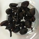 コーヒーチェリーティー(珈琲果実茶)「カスカラ」を味わう