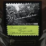 「ブラジル ミナミハラ農園」は日系2世の農園主が育てたスペシャルティコーヒー(UCCカフェメルカード)