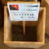 パプアニューギニア産のコーヒー豆「フィニステラAA」を味わう(珈琲や 東小金井工房)