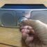 テレビ音声を手元で大きく聴けるアンプ内蔵ポータブルスピーカー SP-A55-S レビュー