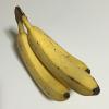 毎朝のバナナ 1本と牛乳 1杯で睡眠の質は向上するか?