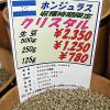ホンジュラス産のコーヒー豆「クリスタル」を味わう(コーヒーロースト)