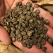 ブラジル産カフェインレスコーヒー(デカフェ)の味と睡眠への影響はいかに