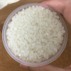 お米は精米してから 1か月以内に消費するのが理想